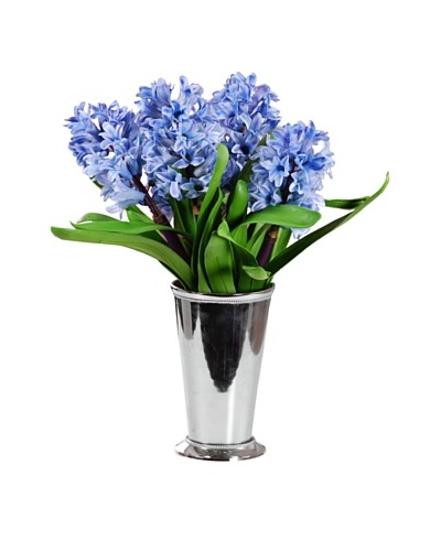 "15"" Hyacinths in Julep Cup"