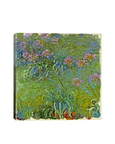 Claude Monet's Agapanthus Flowers Giclée Canvas Print