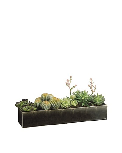 Allstate Floral Succulents in Long Ceramic Container, Green