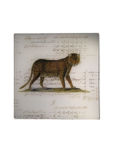 Twigs and Moss African Series Panther Glass Tray