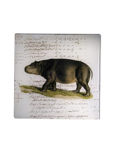 Twigs and Moss African Series Hippopotamus Glass Tray