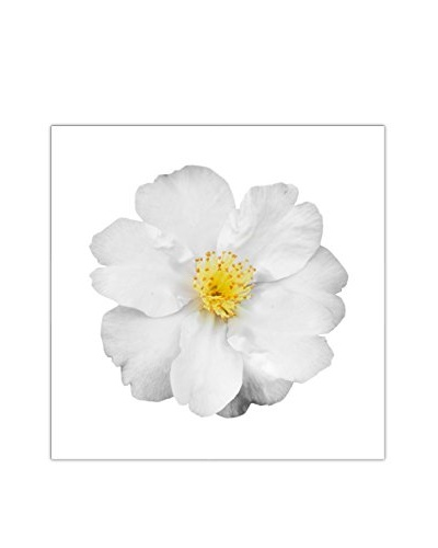 Art Addiction White Floral On White VII Artwork on Acrylic