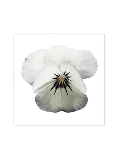 Art Addiction White Floral On White III Artwork on Acrylic