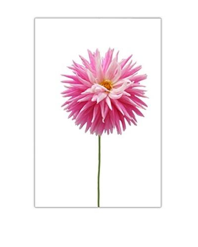 Art Addiction Pink Flower I Artwork on Acrylic