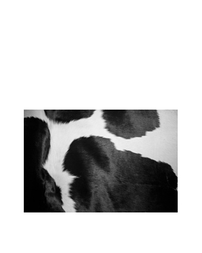 Art Addiction Black and White Cow I
