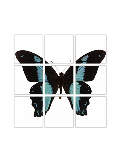 Art Addiction Acrylic Printed Blue Butterfly, Polyptych