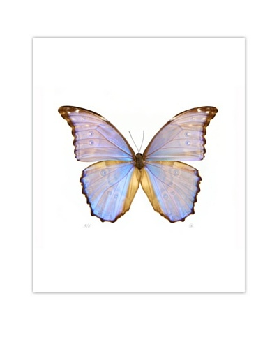 Art Addiction Acrylic Printed Fluorescent Butterfly
