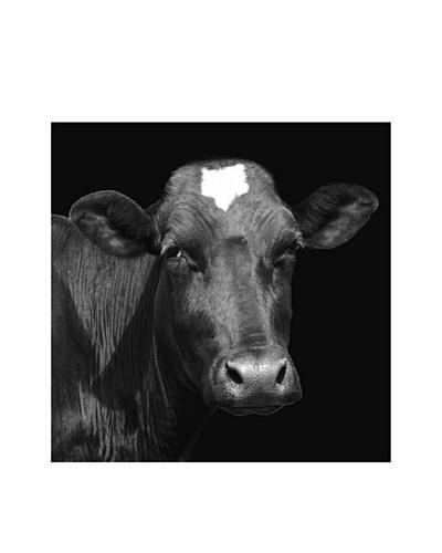 Art Addiction Cow II
