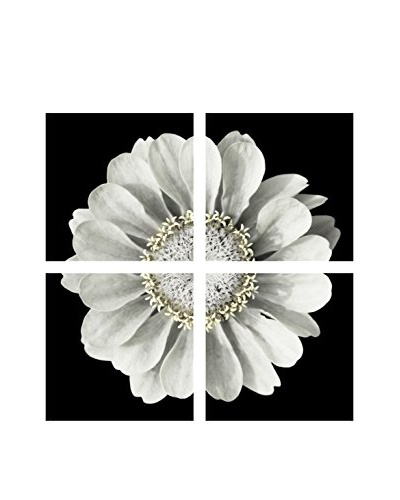 Art Addiction White Flower On Black Artwork on Acrylic (Set of 4)