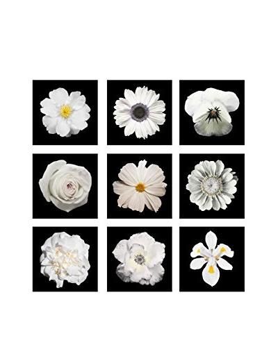Art Addiction White Flower Collage II Artwork on Acrylic (Set of 9)