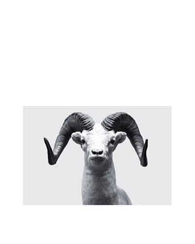 Art Addiction Ram II