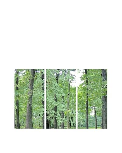 Art Addiction Acrylic Printed Green Trees, Triptych