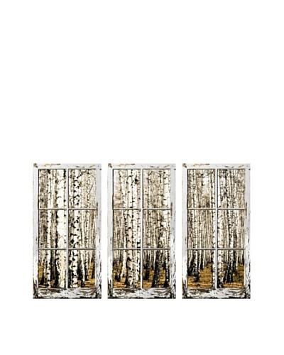 Art Addiction Set of 3 Birch Trees I