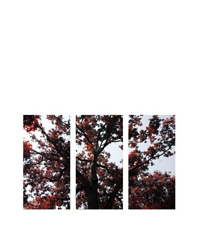 Art Addiction Acrylic Printed Red Tree, Triptych