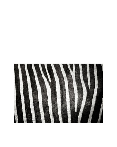 Art Addiction Horizontal Zebra