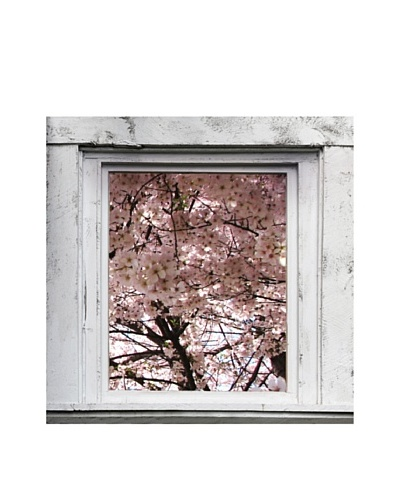 Art Addiction Spring Window VI, Pink
