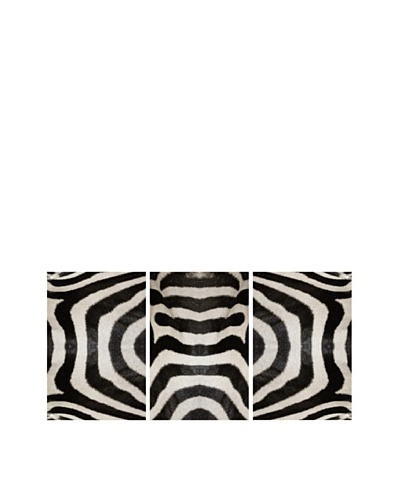 Art Addiction Set of 3 Zebra Stripes