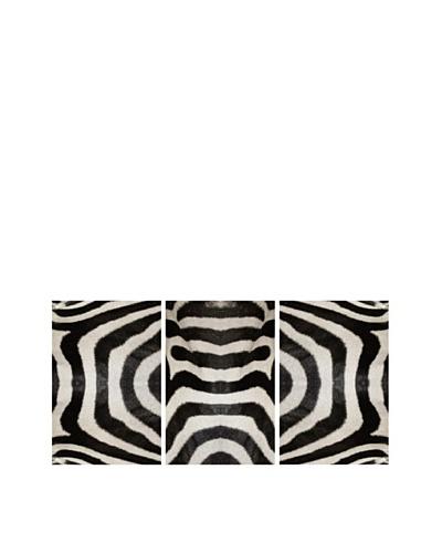 Art Addiction Set of 3 Zebra Stripes