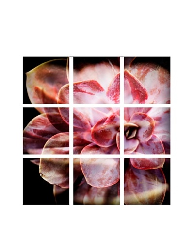 Art Addiction Acrylic Printed Pink Flower, Polyptych