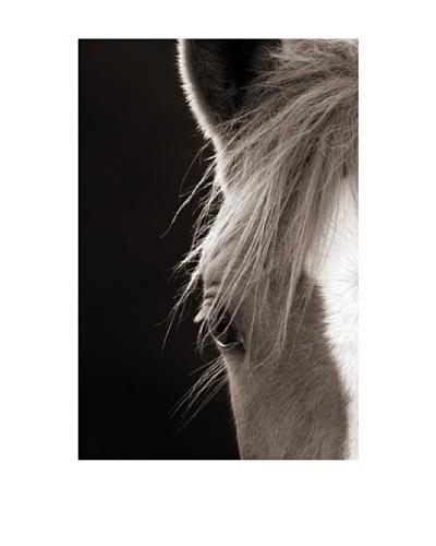 Art Addiction Horse, Left