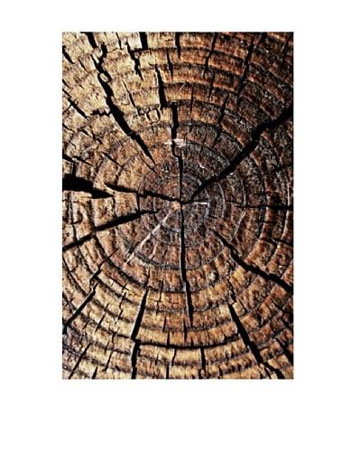 Art Addiction Wood Close-Up II
