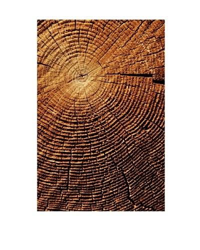 Art Addiction Wood Close-Up I