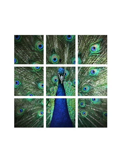 Art Addiction Acrylic Printed Peacock, Polyptych