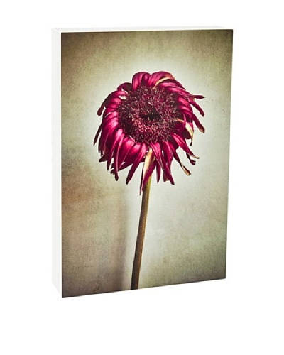 Art Block Hot Floral - Fine Art Photography On Lacquered Wood Blocks