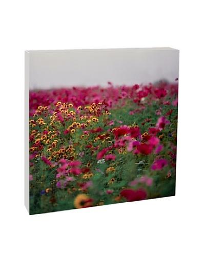Art Block Meadow & Flowers Fine Art Photography on Metal