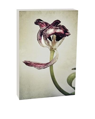 Art Block Purple Petals Fine Art Photography on Metal
