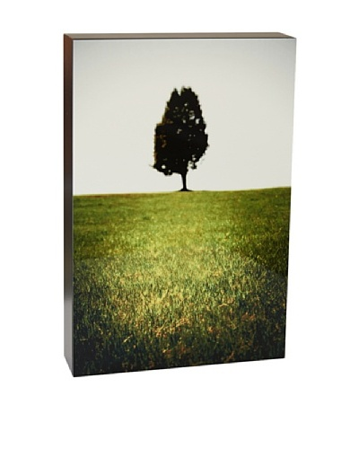 Art Block Lone Tree - Fine Art Photography On Lacquered Wood Blocks