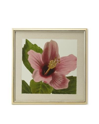 Art Trends Flower Giclee Print, 22 x 22