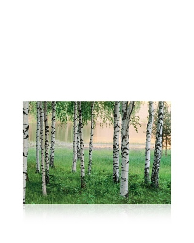 Nordic Forest LG Wall Mural