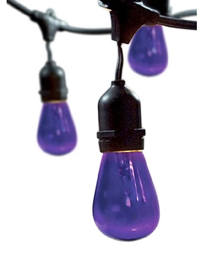 Bulbrite Celebrate Ceramic 15-Light Indoor/Outdoor String, Purple
