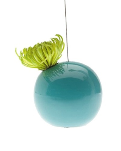 Chive Hanging Aerium Orb Vase