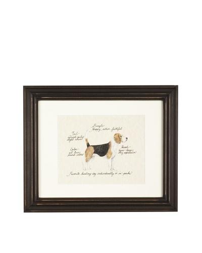 Clapper Hollow Beagle