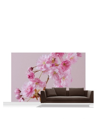 Clive Nichols Photography The Flowers of Prunus Kanzan Standard Mural - 12' x 8'