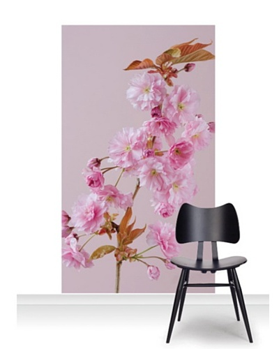 Clive Nichols Photography The Flowers of Prunus Kanzan Mural [Accent]