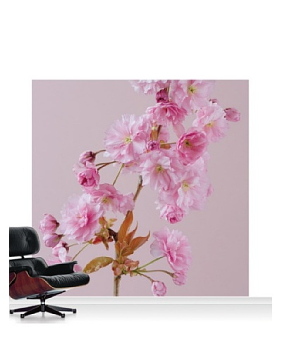 Clive Nichols Photography The Flowers of Prunus Kanzan Mural, Standard, 8' x 8'