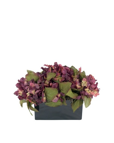 Creative Displays Plum Hydrangea in Black Sill Pot