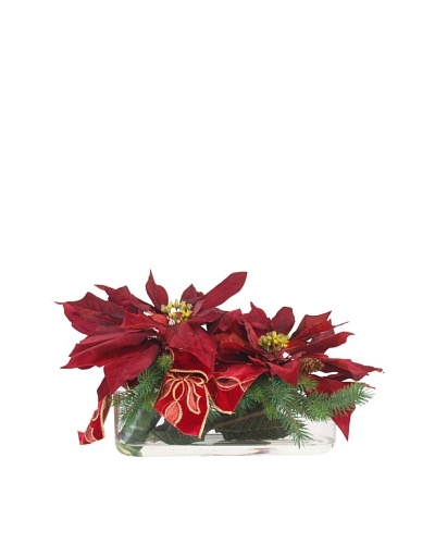 Creative Displays Poinsettia & Pine in Long Glass