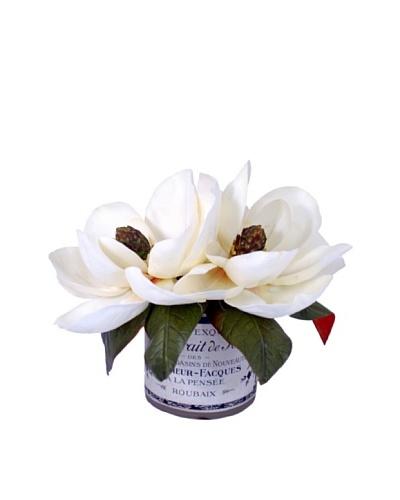 Creative Displays Magnolias in Label Pot, Cream