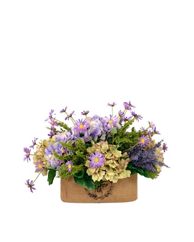 Creative Displays Lavender & Green Hydrangea with Daisy in Oval Planter