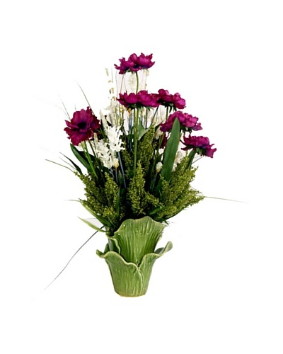 Creative Displays Anemone & Thistle in Green Leaf Pot