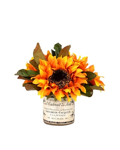 Creative Displays Sunflower in Label Pot