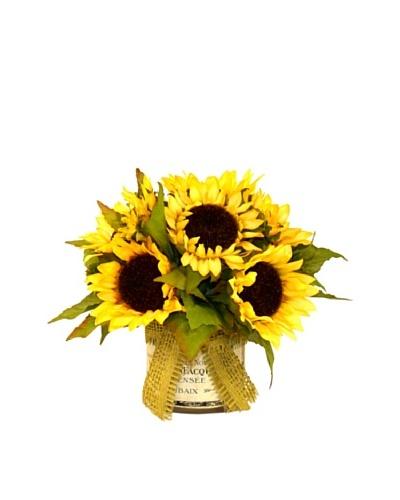 Creative Displays Sunflowers in Label Pot