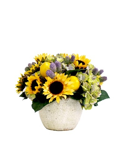 Creative Displays Sunflower & Hydrangea in Cream Pot