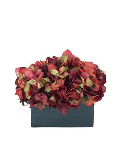 Creative Displays Wine Hydrangea in Black Sill Pot