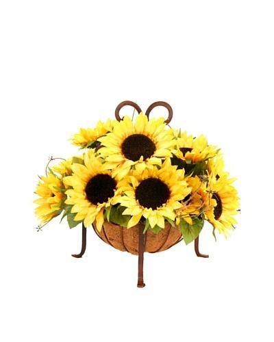 Creative Displays Sunflowers in Iron Basket