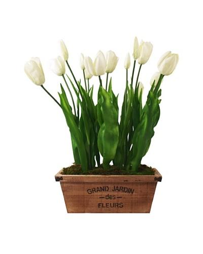 Creative Displays White Tulips in Jardin Pot